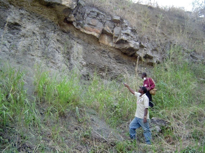 Nigeria - Carbonate Rocks Project - limestone bed